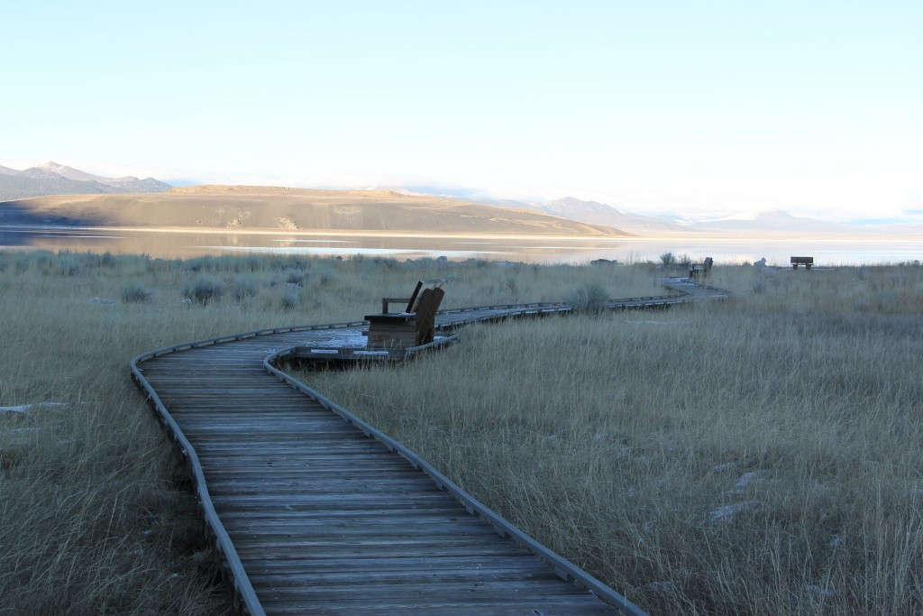 boardwalk to mono lake shore