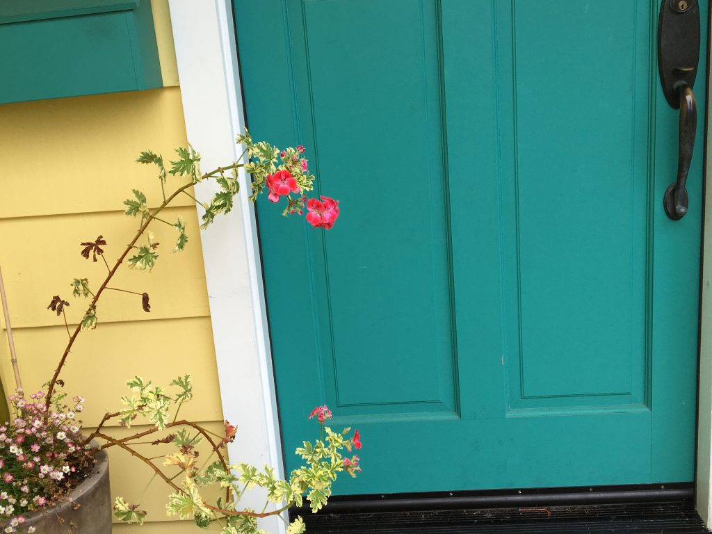 geranium and door