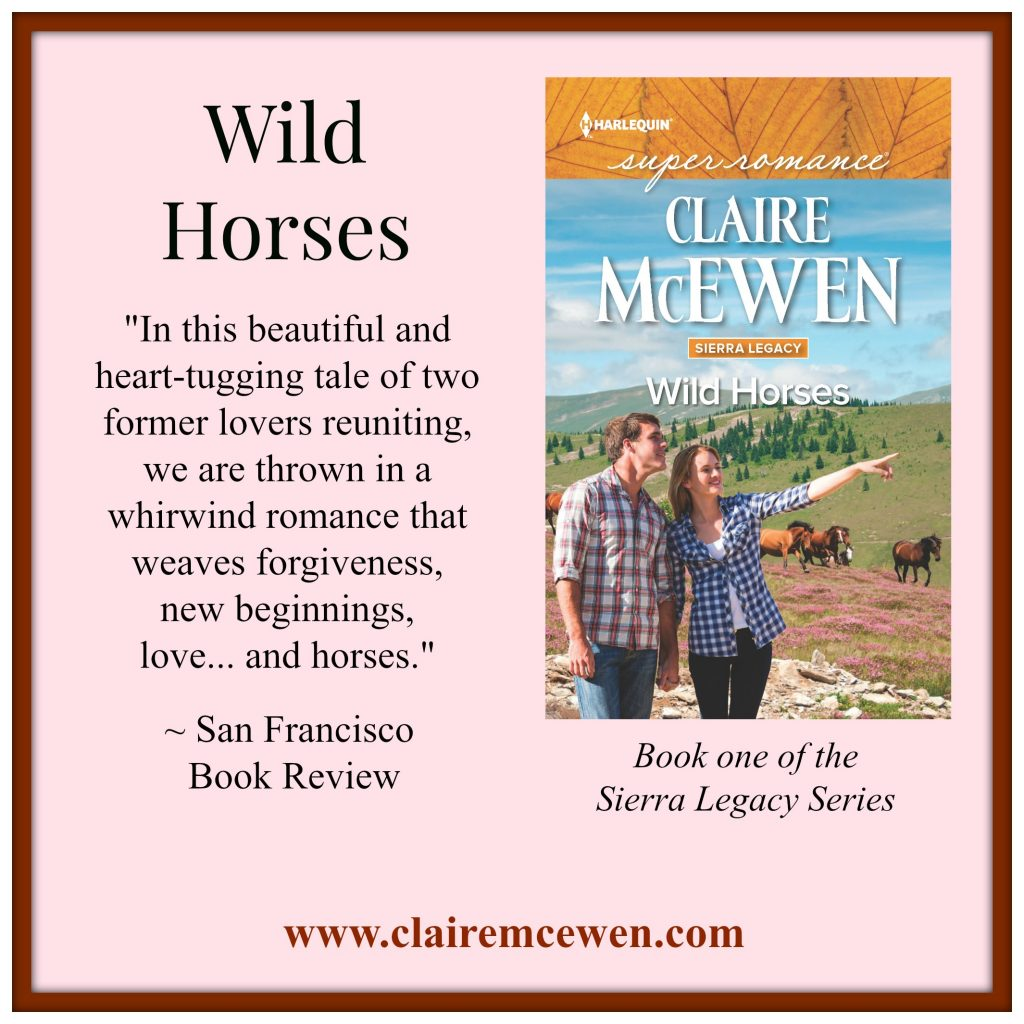 wild horses SF review image