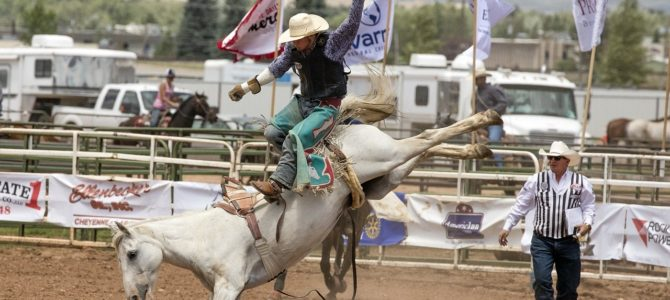 A Little Rodeo Research